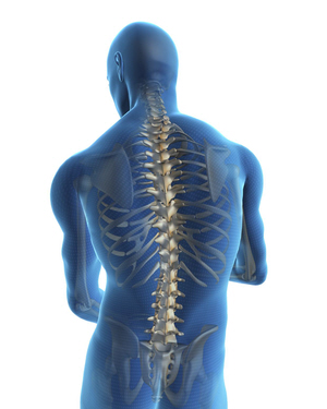 Posture for Back- Orthopedic Surgeons Frederick MD